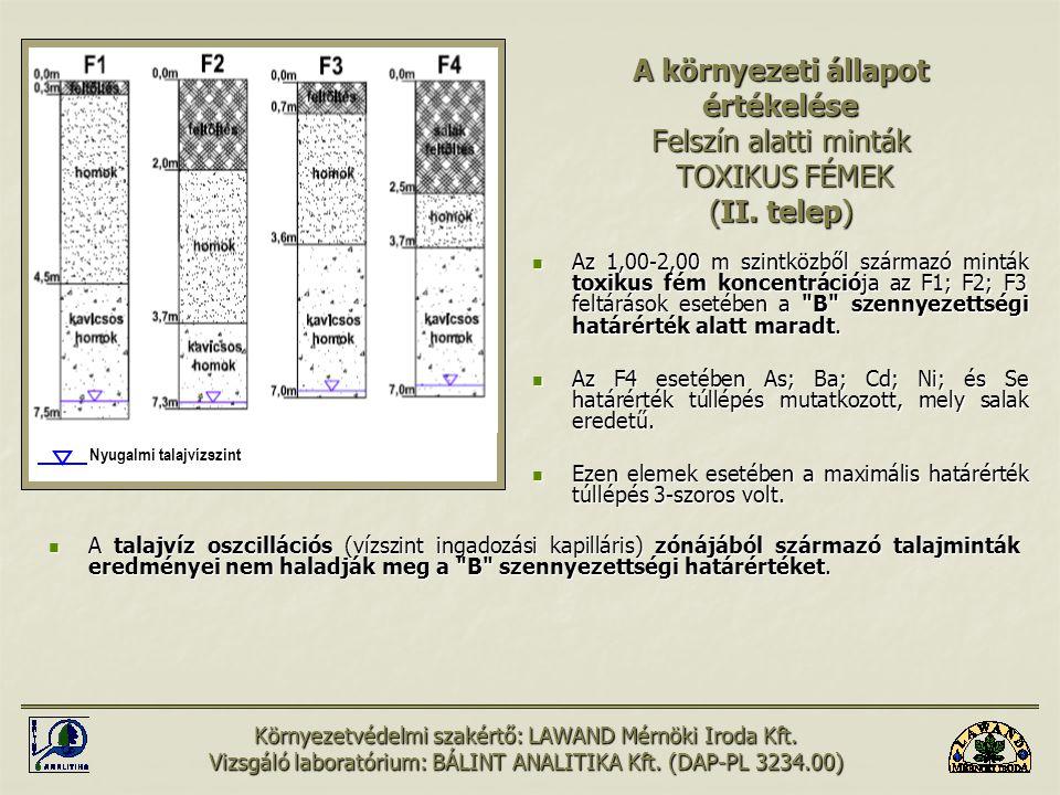 A környezeti állapot értékelése Felszín alatti minták TOXIKUS FÉMEK (II. telep)