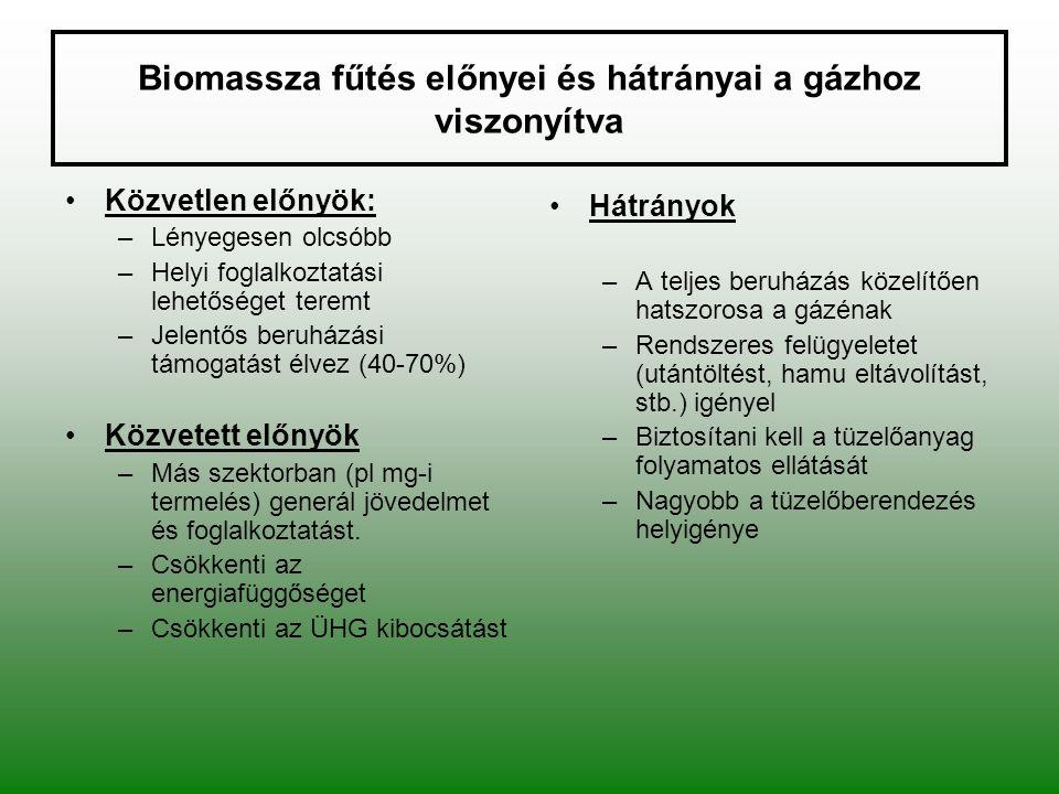 Biomassza fűtés előnyei és hátrányai a gázhoz viszonyítva