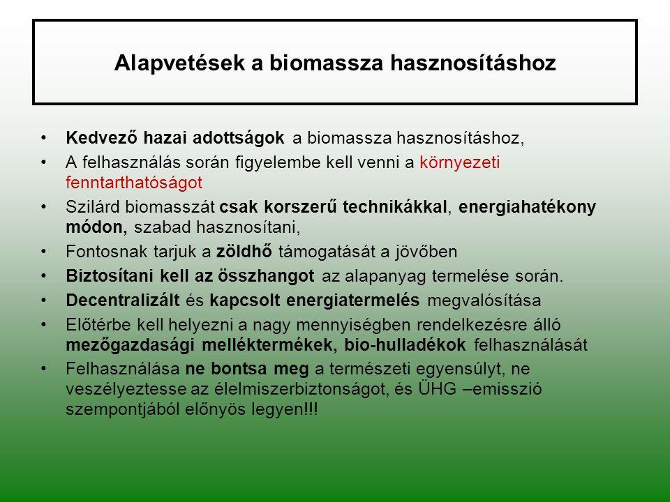 Alapvetések a biomassza hasznosításhoz