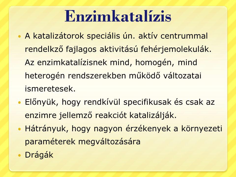 Enzimkatalízis