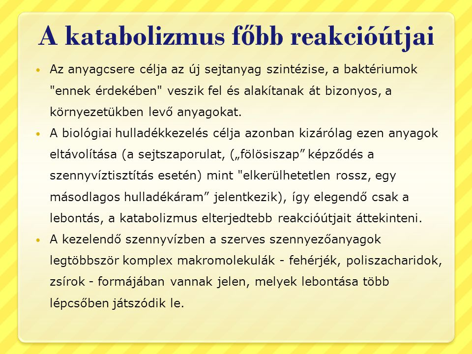 A katabolizmus főbb reakcióútjai