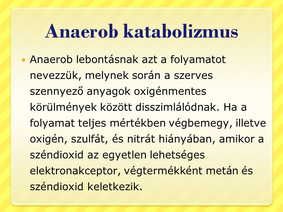 Anaerob katabolizmus