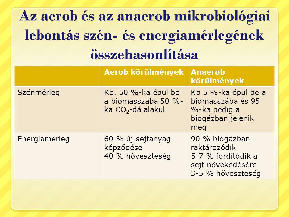Az aerob és az anaerob mikrobiológiai lebontás szén- és energiamérlegének összehasonlítása