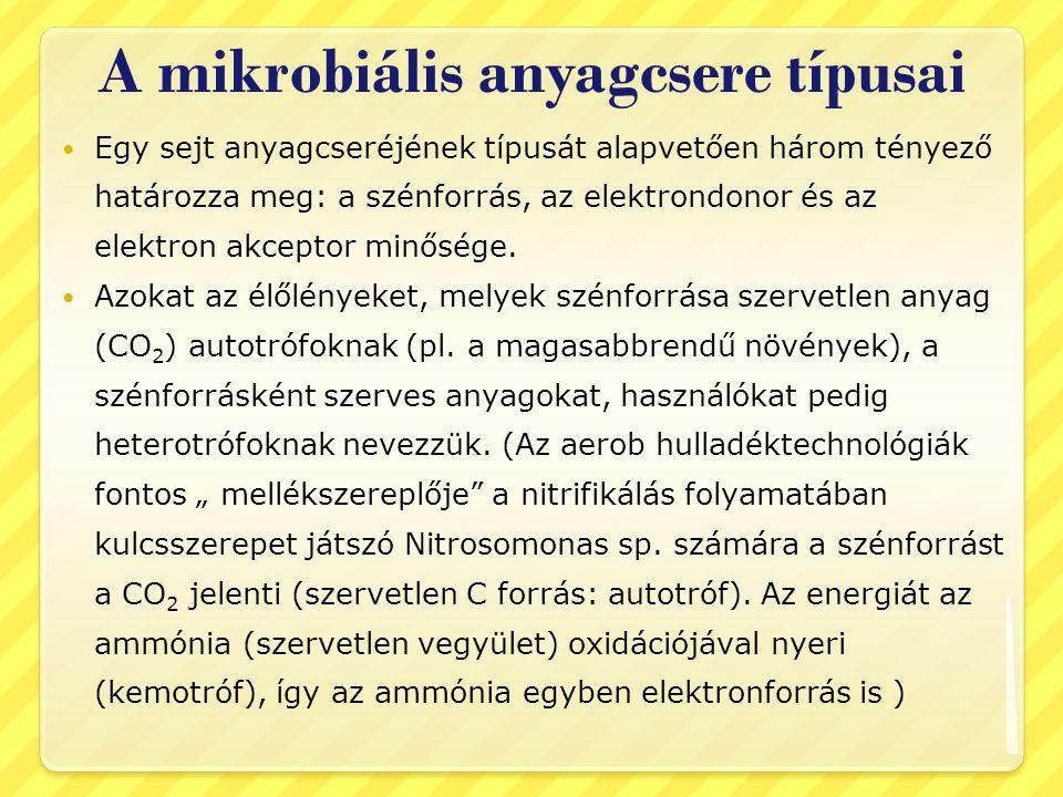 A mikrobiális anyagcsere típusai