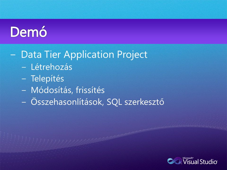 Data Tier Application Project