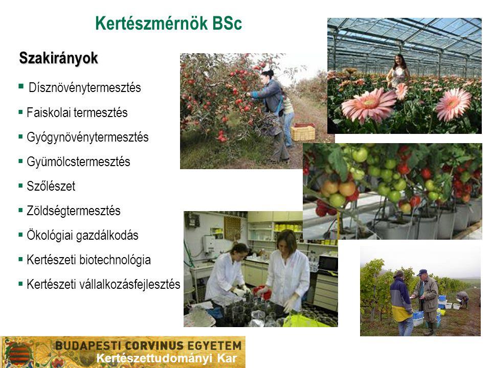 Kertészmérnök BSc Szakirányok Dísznövénytermesztés