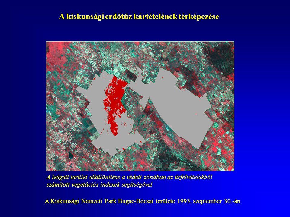 A kiskunsági erdőtűz kártételének térképezése