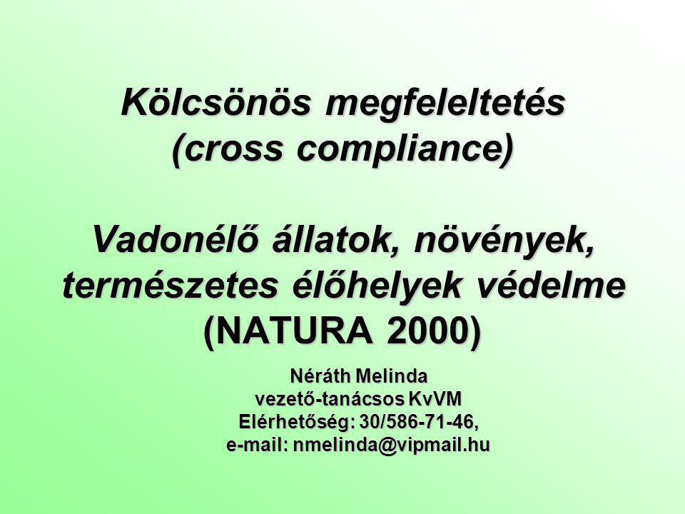 e-mail: nmelinda@vipmail.hu