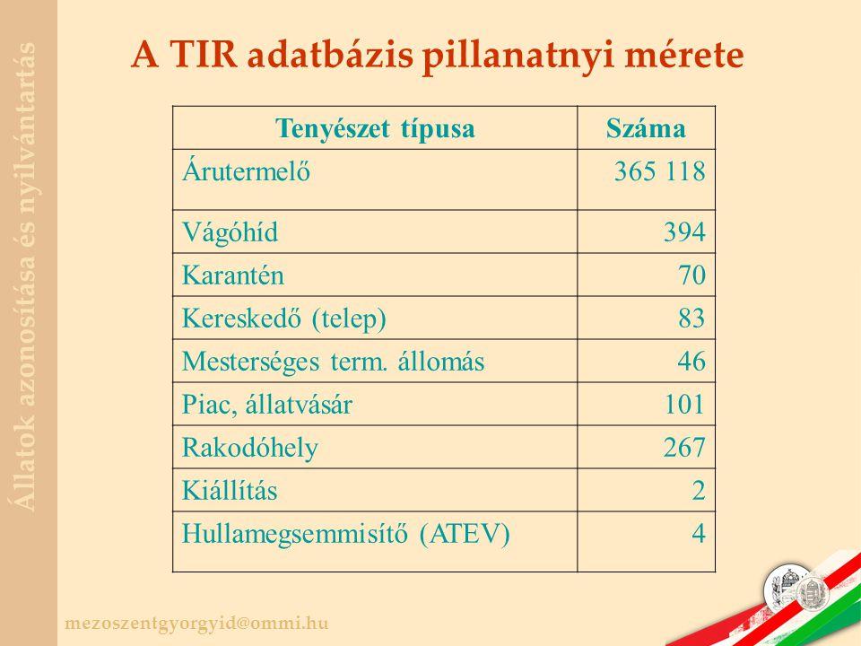 A TIR adatbázis pillanatnyi mérete