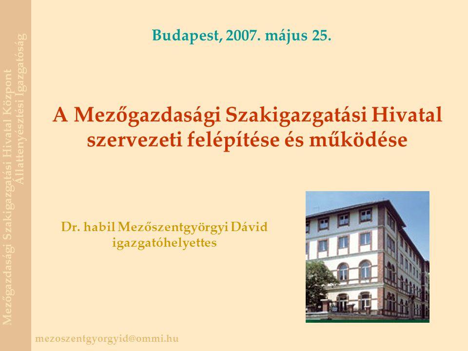 Dr. habil Mezőszentgyörgyi Dávid igazgatóhelyettes