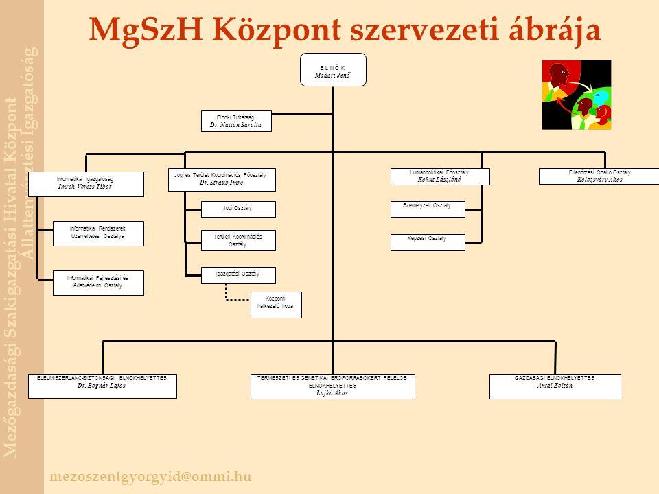 MgSzH Központ szervezeti ábrája
