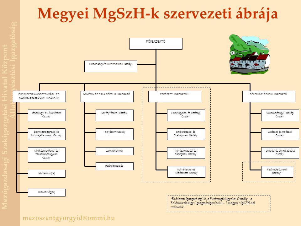 Megyei MgSzH-k szervezeti ábrája
