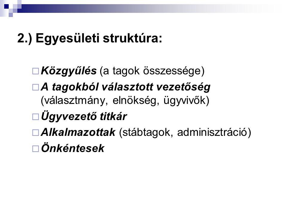 2.) Egyesületi struktúra: