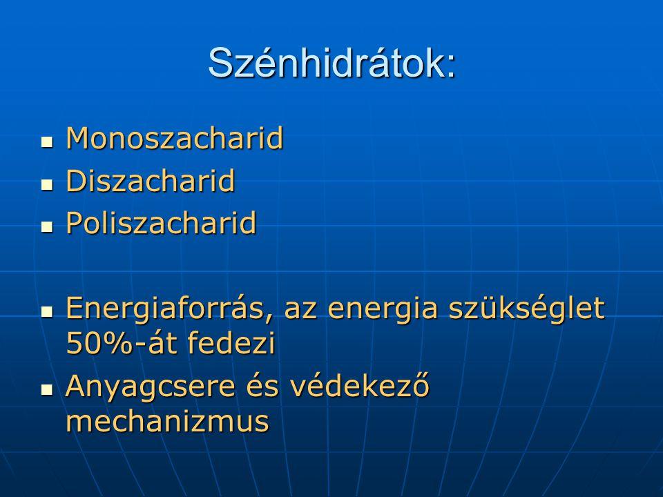 Szénhidrátok: Monoszacharid Diszacharid Poliszacharid