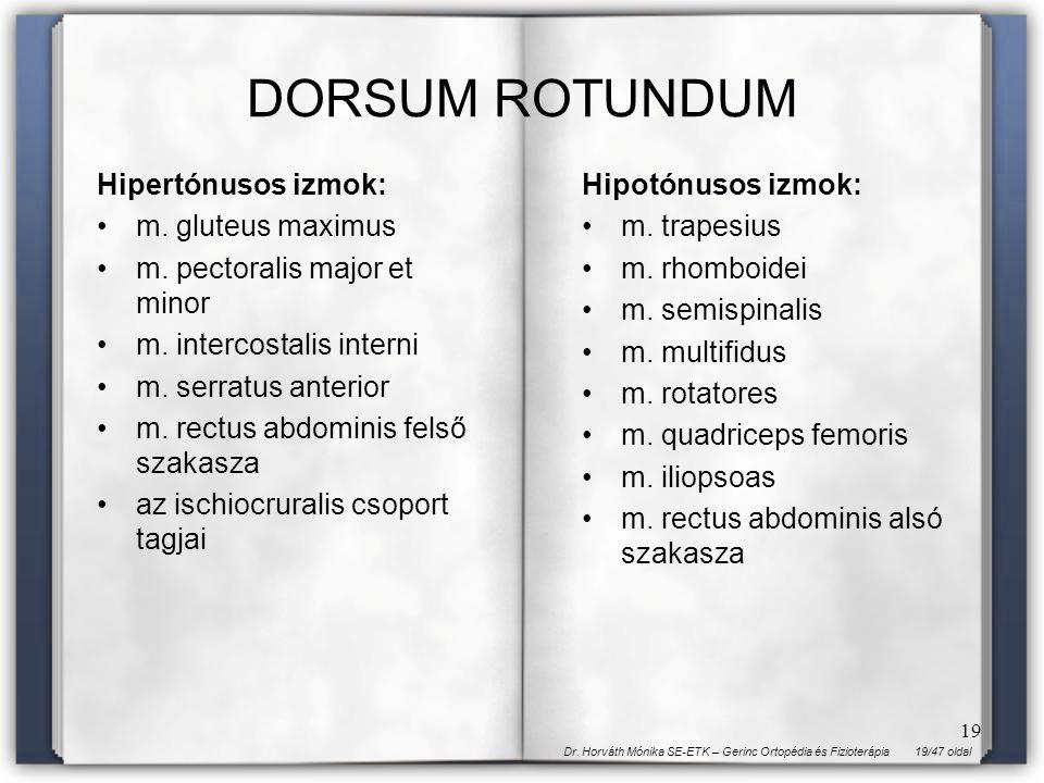 DORSUM ROTUNDUM Hipertónusos izmok: m. gluteus maximus