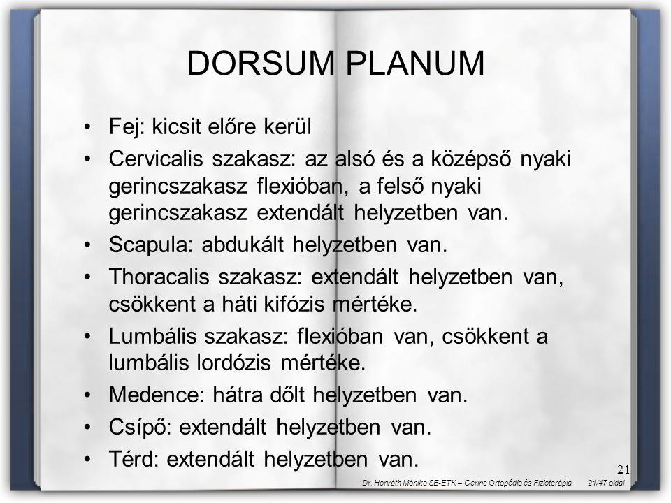 DORSUM PLANUM Fej: kicsit előre kerül