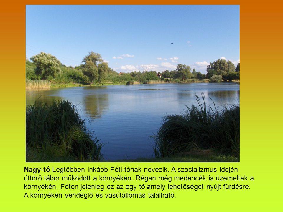 Nagy-tó Legtöbben inkább Fóti-tónak nevezik