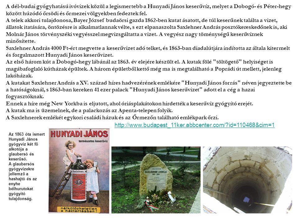 A dél-budai gyógyhatású ivóvizek közül a legismertebb a Hunyadi János keserűvíz, melyet a Dobogó- és Péter-hegy között húzódó őrsödi és őrmezei völgyekben fedeztek fel. A telek akkori tulajdonosa, Bayer József budaörsi gazda 1862-ben kutat ásatott, de túl keserűnek találta a vizet, állatok itatására, öntözésre is alkalmatlannak vélte, s ezt elpanaszolta Saxlehner András posztókereskedőnek is, aki Molnár János törvényszéki vegyésszel megvizsgáltatta a vizet. A vegyész nagy töménységű keserűvíznek minősítette. Saxlehner András 4000 Ft-ért megvette a keserűvizet adó telket, és 1863-ban diadalútjára indította az általa kitermelt és forgalmazott Hunyadi János keserűvizet. Az első három kút a Dobogó-hegy lábánál az 1863. év elejére készült el. A kutak fölé töltögető helyiséget is magábafoglaló kútházak épültek. A három épületből kettő még ma is megtalálható a Poprádi út mellett, jelenleg lakóházak.