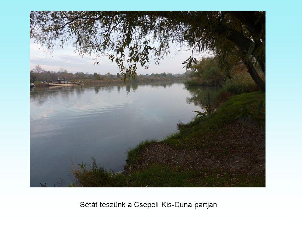 Sétát teszünk a Csepeli Kis-Duna partján