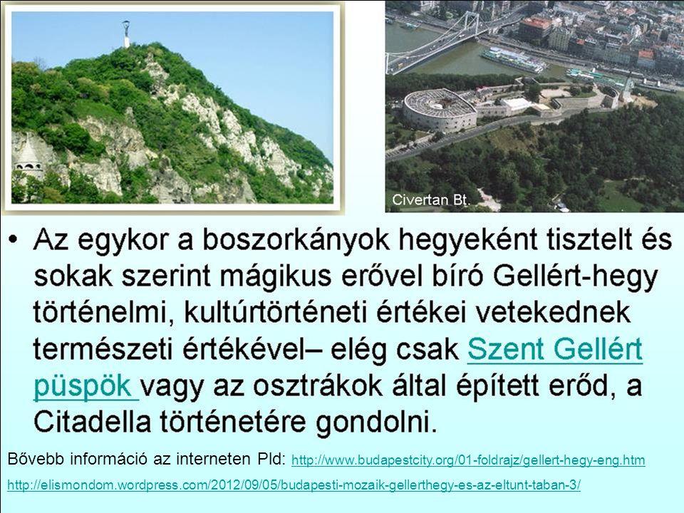 Bővebb információ az interneten Pld: http://www. budapestcity