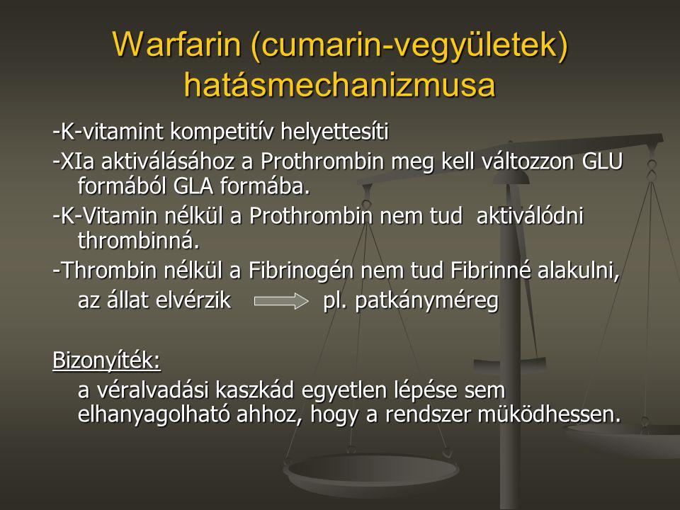 Warfarin (cumarin-vegyületek) hatásmechanizmusa