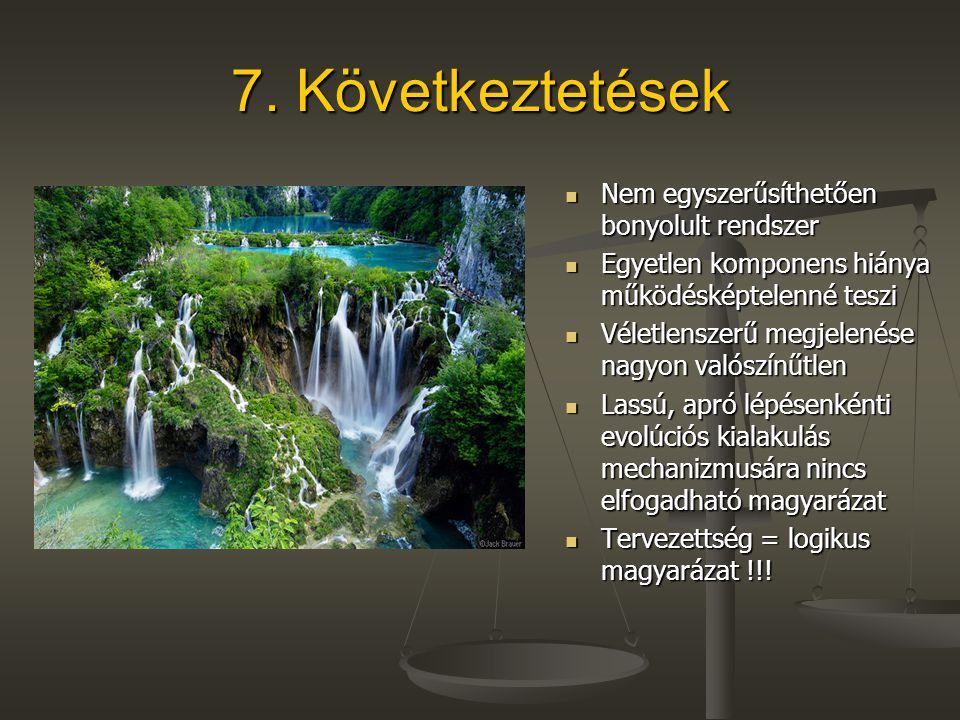 7. Következtetések Nem egyszerűsíthetően bonyolult rendszer