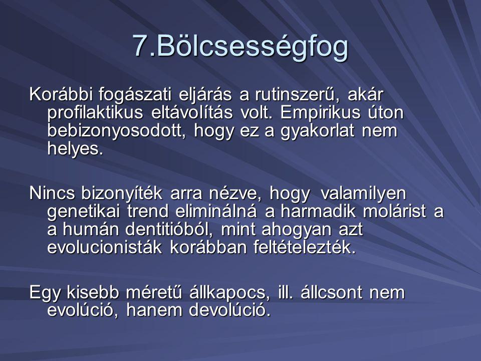 7.Bölcsességfog