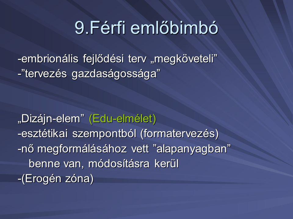 """9.Férfi emlőbimbó -embrionális fejlődési terv """"megköveteli"""