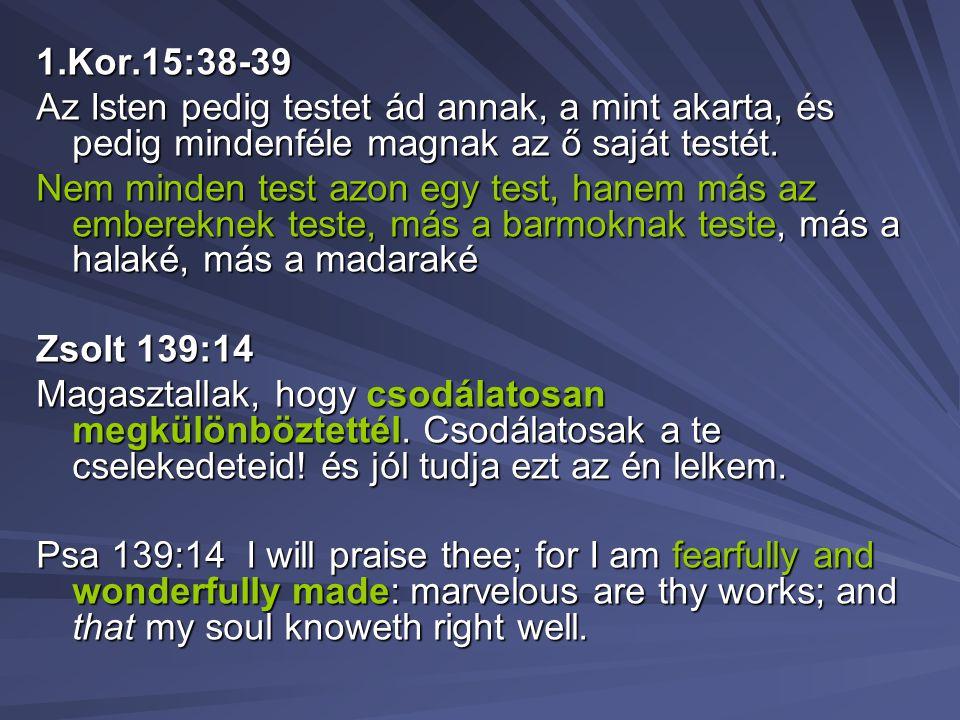 1.Kor.15:38-39 Az Isten pedig testet ád annak, a mint akarta, és pedig mindenféle magnak az ő saját testét.