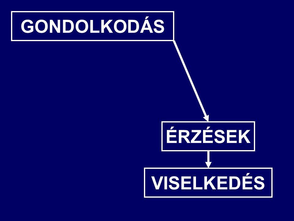 GONDOLKODÁS ÉRZÉSEK VISELKEDÉS