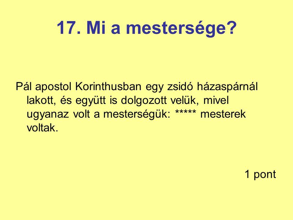 17. Mi a mestersége