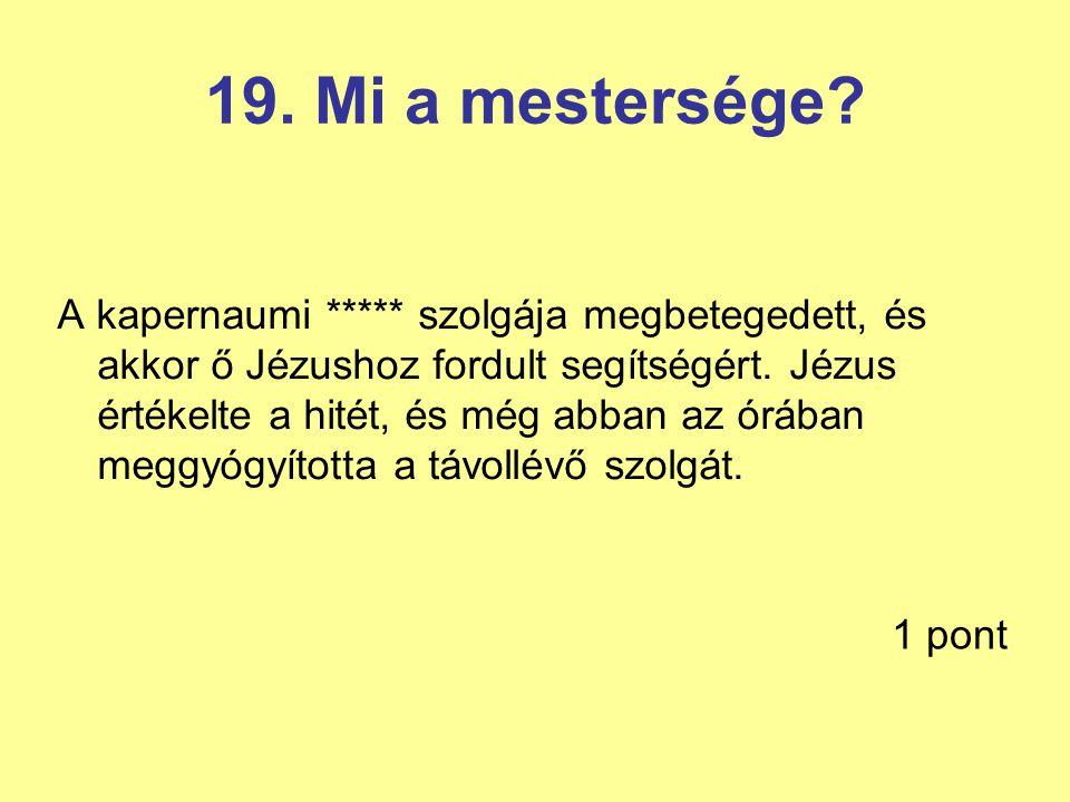 19. Mi a mestersége