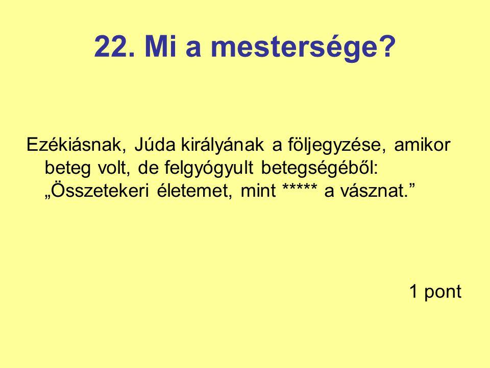 22. Mi a mestersége