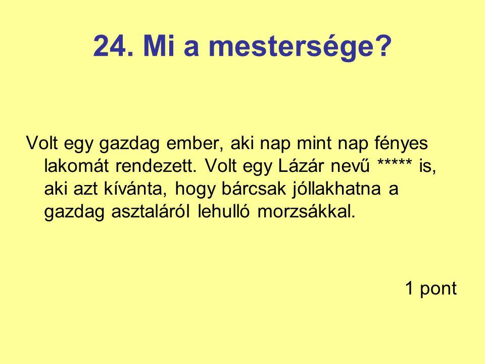 24. Mi a mestersége
