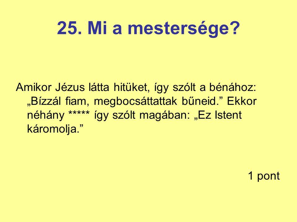 25. Mi a mestersége