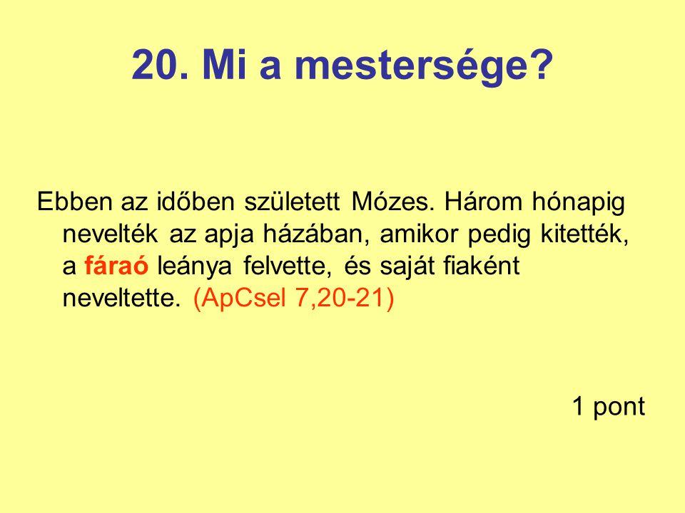 20. Mi a mestersége