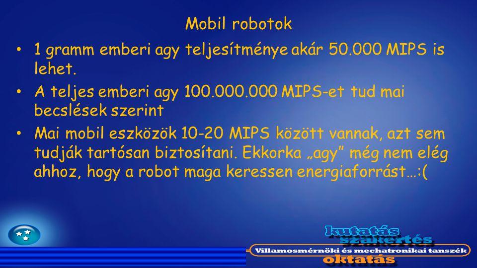 Mobil robotok 1 gramm emberi agy teljesítménye akár 50.000 MIPS is lehet. A teljes emberi agy 100.000.000 MIPS-et tud mai becslések szerint.