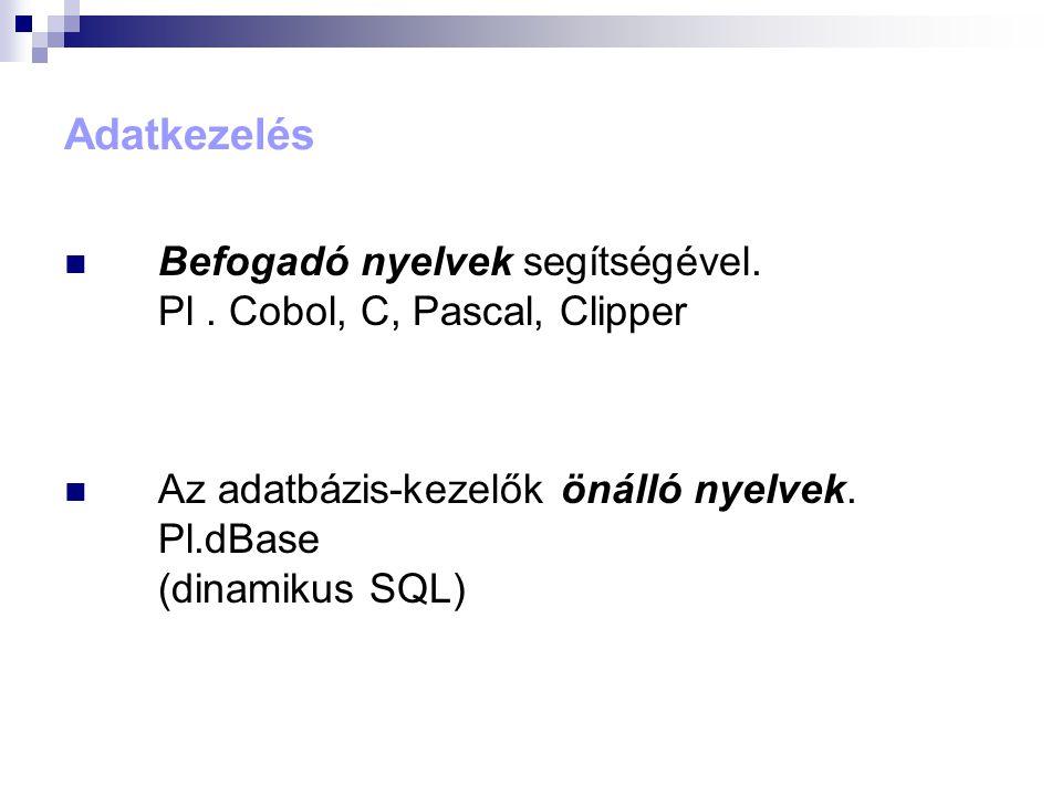 Adatkezelés Befogadó nyelvek segítségével. Pl . Cobol, C, Pascal, Clipper.