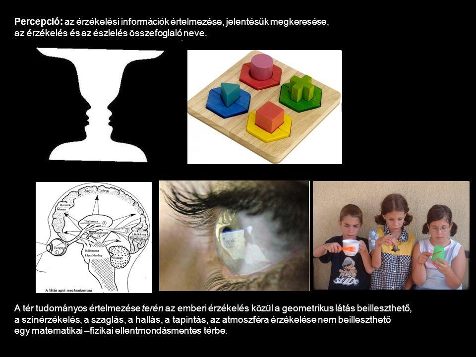Percepció: az érzékelési információk értelmezése, jelentésük megkeresése,