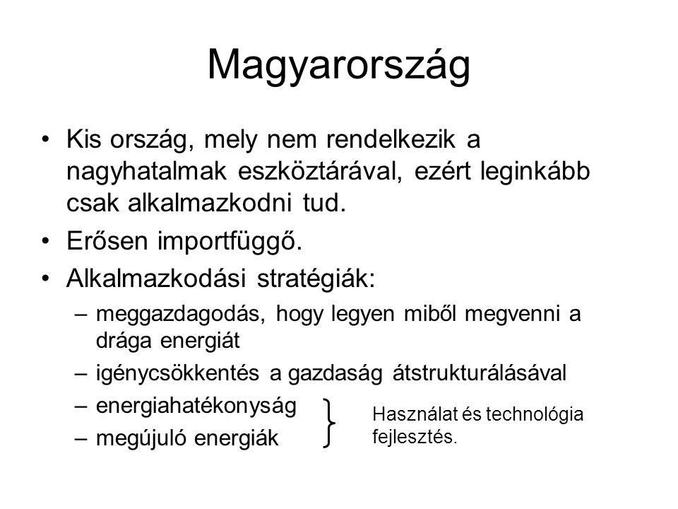 Magyarország Kis ország, mely nem rendelkezik a nagyhatalmak eszköztárával, ezért leginkább csak alkalmazkodni tud.
