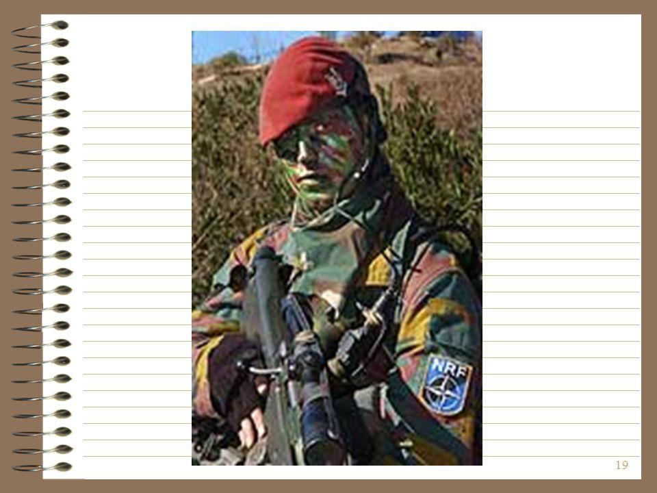 A katonát nem ismerjük, de a bal karján lévő emblémát igen.