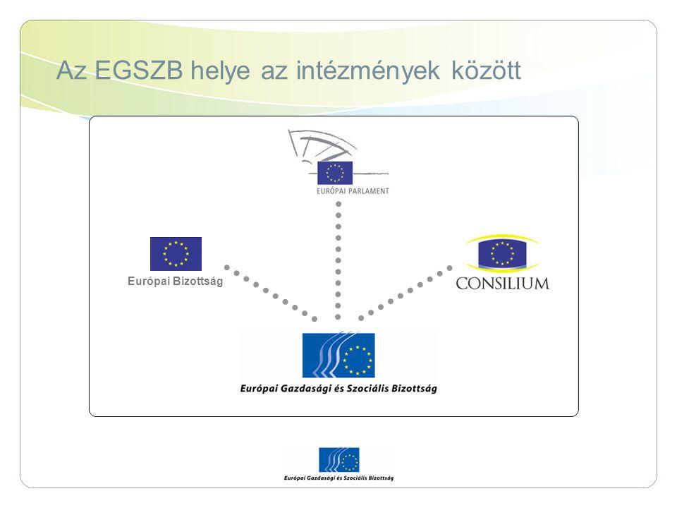 Az EGSZB helye az intézmények között