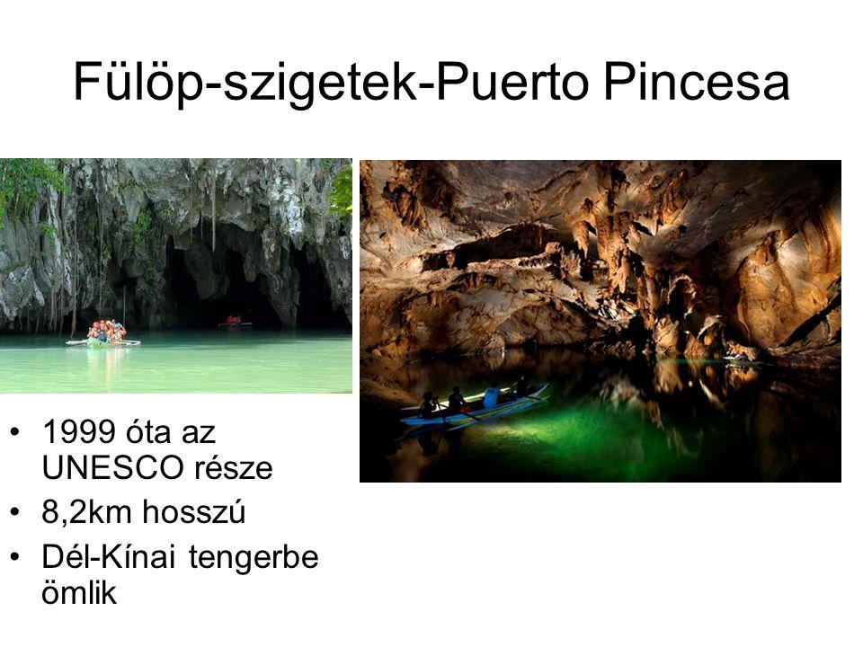 Fülöp-szigetek-Puerto Pincesa