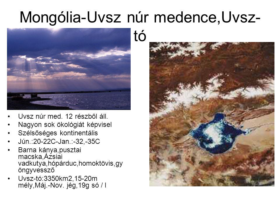 Mongólia-Uvsz núr medence,Uvsz-tó
