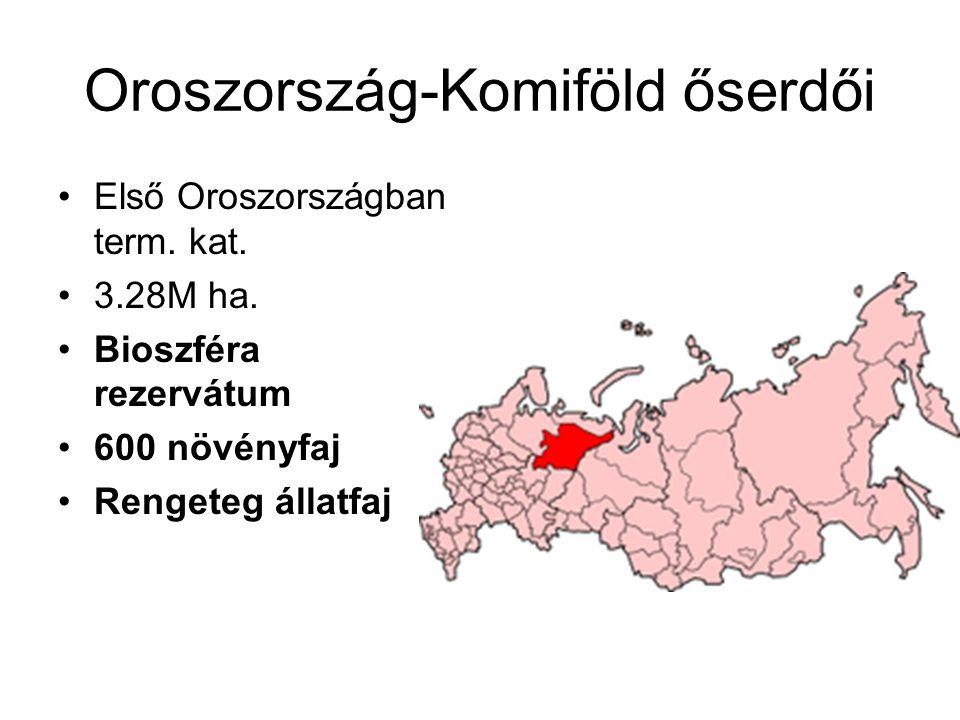 Oroszország-Komiföld őserdői