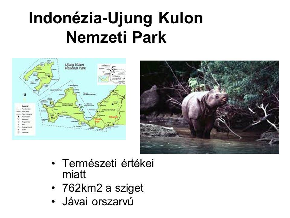 Indonézia-Ujung Kulon Nemzeti Park
