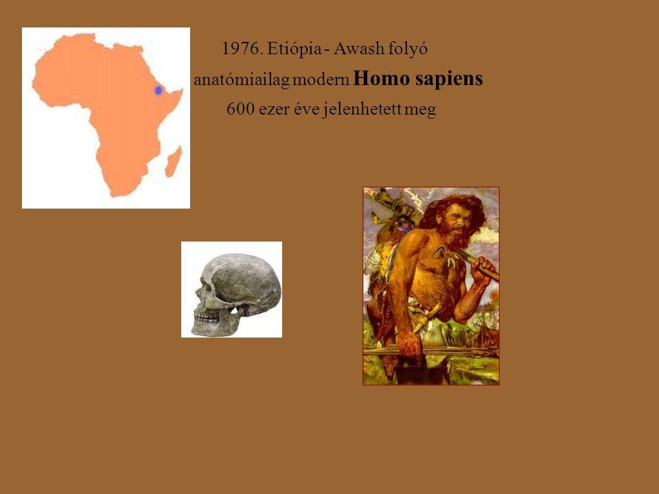 1976. Etiópia - Awash folyó anatómiailag modern Homo sapiens 600 ezer éve jelenhetett meg