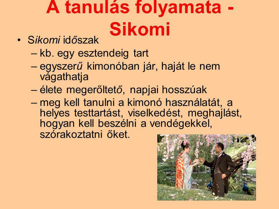 A tanulás folyamata - Sikomi