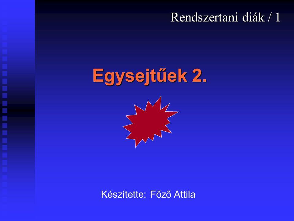 Rendszertani diák / 1 Egysejtűek 2. Készítette: Főző Attila