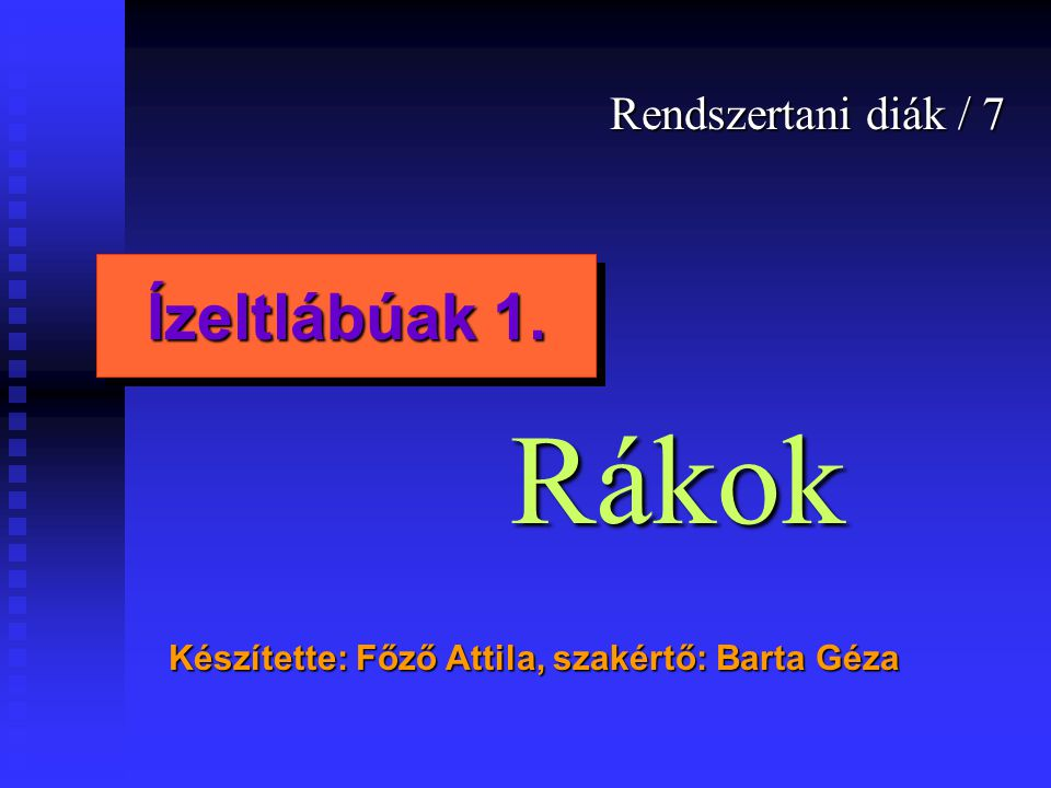 Rákok Ízeltlábúak 1. Rendszertani diák / 7